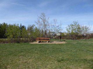 Photo 24: 11344 173 Avenue in Edmonton: Zone 27 House for sale : MLS®# E4158270