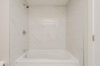 Photo 22: 11428 37A Avenue in Edmonton: Zone 16 House for sale : MLS®# E4160042