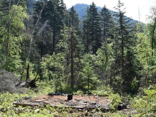 Photo 6: DL4361 DUFFY LAKE ROAD: Lillooet Lots/Acreage for sale (South West)  : MLS®# 152311