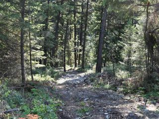 Photo 12: DL4361 DUFFY LAKE ROAD: Lillooet Lots/Acreage for sale (South West)  : MLS®# 152311