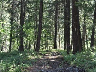 Photo 13: DL4361 DUFFY LAKE ROAD: Lillooet Lots/Acreage for sale (South West)  : MLS®# 152311