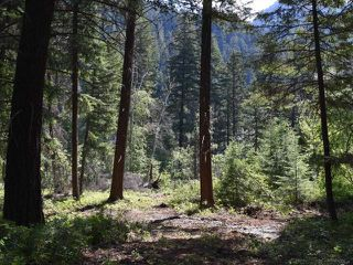 Photo 1: DL4361 DUFFY LAKE ROAD: Lillooet Lots/Acreage for sale (South West)  : MLS®# 152311