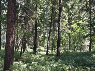 Photo 3: DL4361 DUFFY LAKE ROAD: Lillooet Lots/Acreage for sale (South West)  : MLS®# 152311