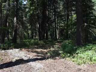 Photo 7: DL4361 DUFFY LAKE ROAD: Lillooet Lots/Acreage for sale (South West)  : MLS®# 152311