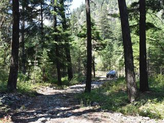 Photo 11: DL4361 DUFFY LAKE ROAD: Lillooet Lots/Acreage for sale (South West)  : MLS®# 152311