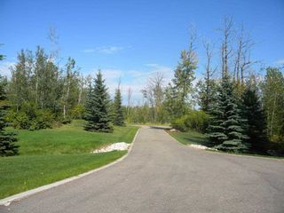 Photo 6: 80 23449 Township Road 505: Rural Leduc County House for sale : MLS®# E4192218