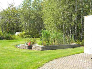 Photo 10: 80 23449 Township Road 505: Rural Leduc County House for sale : MLS®# E4192218