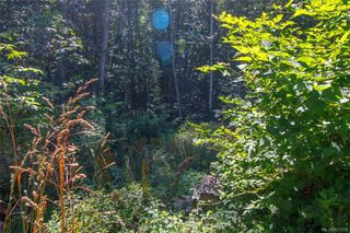 Photo 12: 2359 Galena Rd in Sooke: Sk Broomhill Land for sale : MLS®# 821336