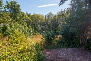 Photo 4: 2359 Galena Rd in Sooke: Sk Broomhill Land for sale : MLS®# 821336