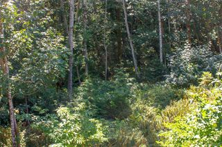 Photo 16: 2359 Galena Rd in Sooke: Sk Broomhill Land for sale : MLS®# 821336