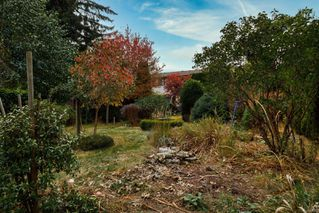 Photo 31: 7609 Blossom Park Pl in : CS Saanichton House for sale (Central Saanich)  : MLS®# 858076