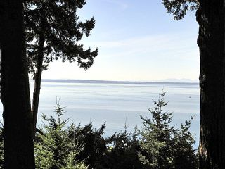 Photo 20: 2443 CHRISTOPHERSON Road in Surrey: Crescent Bch Ocean Pk. House for sale (South Surrey White Rock)  : MLS®# F1404193