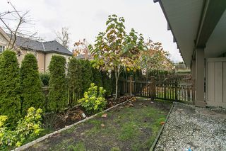 """Photo 23: 71 14838 61 Avenue in Surrey: Sullivan Station Townhouse for sale in """"Sequoia"""" : MLS®# R2123525"""