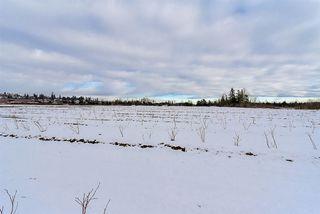 Photo 8: 5072 184 Street in Surrey: Serpentine Land for sale (Cloverdale)  : MLS®# R2130020