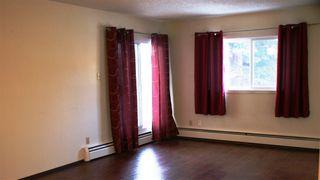 Photo 7: 204 10124 159 Street in Edmonton: Zone 21 Condo for sale : MLS®# E4086010