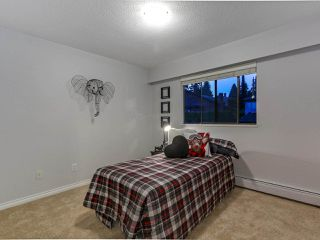 Photo 13: 6341 PYNFORD Court in Burnaby: South Slope House for sale (Burnaby South)  : MLS®# R2304449