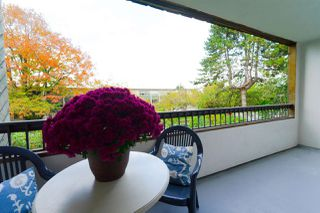 Photo 17: 208 550 E 6TH Avenue in Vancouver: Mount Pleasant VE Condo for sale (Vancouver East)  : MLS®# R2315137