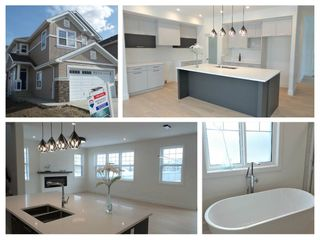 Photo 1: 4503 SALY Place in Edmonton: Zone 53 House for sale : MLS®# E4139164