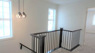 Photo 13: 4503 SALY Place in Edmonton: Zone 53 House for sale : MLS®# E4139164