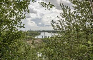Photo 25: 55325 RR 222 NW: Rural Sturgeon County House for sale : MLS®# E4152544