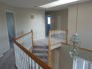 "Photo 7: 12231 TRITES Road in Richmond: Steveston South House for sale in ""STEVESTON SOUTH"" : MLS®# R2361670"