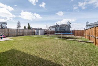 Photo 29: 15420 67 Street in Edmonton: Zone 28 House for sale : MLS®# E4155377