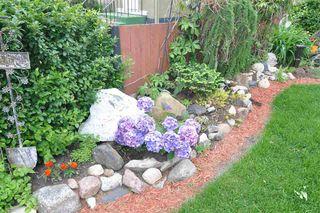 Photo 4: 7519 110 Avenue in Edmonton: Zone 09 House for sale : MLS®# E4159024