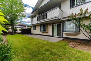 """Photo 19: 402 19645 64 Avenue in Langley: Willoughby Heights Townhouse for sale in """"HIGHGATE TERRACE"""" : MLS®# R2379846"""