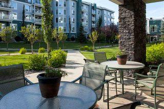 Photo 28: 123 1130 TORY Road in Edmonton: Zone 14 Condo for sale : MLS®# E4219599
