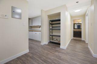 Photo 13: 103 8527 82 Avenue in Edmonton: Zone 17 Condo for sale : MLS®# E4224801