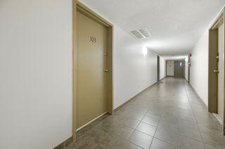 Photo 10: 103 8527 82 Avenue in Edmonton: Zone 17 Condo for sale : MLS®# E4224801