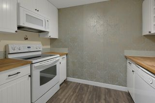 Photo 18: 103 8527 82 Avenue in Edmonton: Zone 17 Condo for sale : MLS®# E4224801