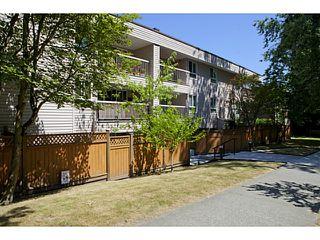 Photo 7: # 311 825 E 7TH AV in Vancouver: Mount Pleasant VE Condo for sale (Vancouver East)  : MLS®# V1019662