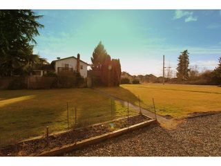 Photo 18: 19889 73A Avenue in Langley: Willoughby Heights House for sale : MLS®# F1403551