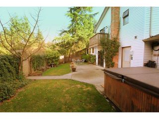 Photo 16: 19889 73A Avenue in Langley: Willoughby Heights House for sale : MLS®# F1403551
