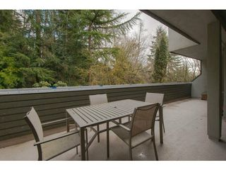 "Photo 14: 70 1947 PURCELL Way in North Vancouver: Lynnmour Condo for sale in ""LYNNMOUR SOUTH"" : MLS®# V1047717"