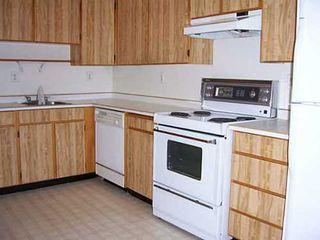 Photo 2: 53 4800 TRIMARAN Drive in Richmond: Steveston South Home for sale ()  : MLS®# V978059