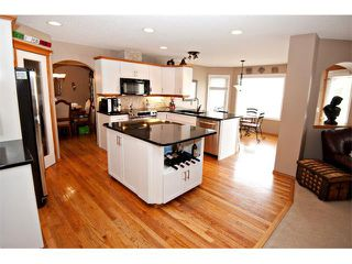 Photo 9: 60 DOUGLASVIEW Rise SE in Calgary: Douglasdale Estates House for sale : MLS®# C4012929