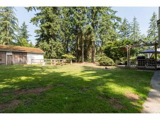 Photo 18: 2395 170 Street in Surrey: Pacific Douglas House for sale (South Surrey White Rock)  : MLS®# R2091442