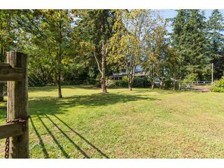 Photo 20: 2395 170 Street in Surrey: Pacific Douglas House for sale (South Surrey White Rock)  : MLS®# R2091442
