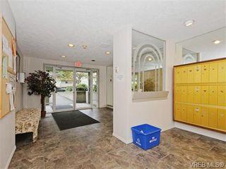Photo 17: 206 2647 Graham St in VICTORIA: Vi Hillside Condo for sale (Victoria)  : MLS®# 743081