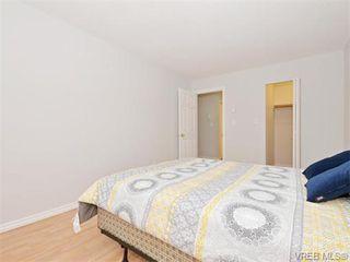 Photo 11: 206 2647 Graham St in VICTORIA: Vi Hillside Condo for sale (Victoria)  : MLS®# 743081