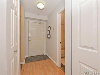 Photo 14: 206 2647 Graham St in VICTORIA: Vi Hillside Condo for sale (Victoria)  : MLS®# 743081