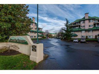 "Photo 2: 307 2964 TRETHEWEY Street in Abbotsford: Abbotsford West Condo for sale in ""CASCADE GREEN"" : MLS®# R2124722"