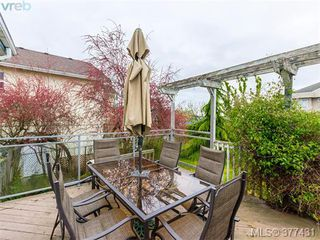 Photo 19: 37 Regina Ave in VICTORIA: SW Gateway Single Family Detached for sale (Saanich West)  : MLS®# 757815
