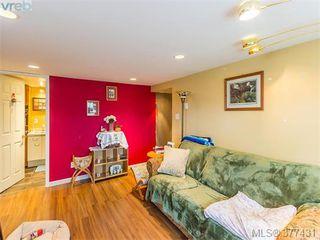 Photo 14: 37 Regina Ave in VICTORIA: SW Gateway Single Family Detached for sale (Saanich West)  : MLS®# 757815