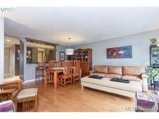Photo 5: 9 2828 Shelbourne St in VICTORIA: Vi Oaklands Row/Townhouse for sale (Victoria)  : MLS®# 759184