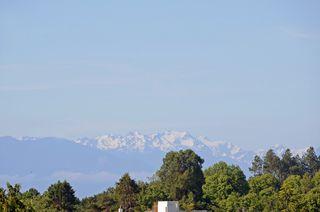 Photo 17: 401 1012 Pakington St in VICTORIA: Vi Fairfield West Condo for sale (Victoria)  : MLS®# 763626