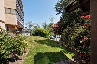 Photo 18: 401 1012 Pakington St in VICTORIA: Vi Fairfield West Condo Apartment for sale (Victoria)  : MLS®# 763626
