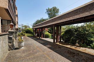 Photo 19: 401 1012 Pakington Street in VICTORIA: Vi Fairfield West Condo Apartment for sale (Victoria)  : MLS®# 380122